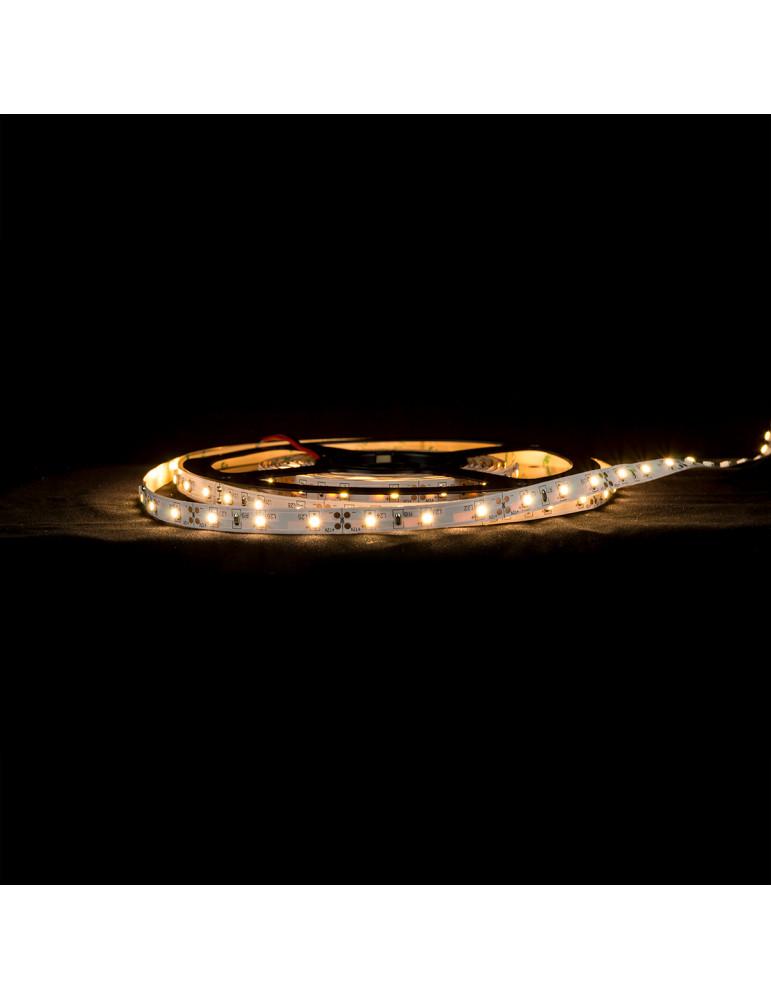 Tira LED 4,8W/m IP20