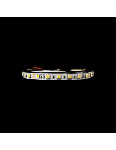 Tira LED 14,4W/m IP20 24V