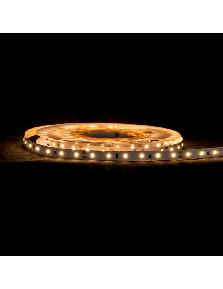 Tira LED 12W/m IP20 24V